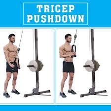 Tricep Rope Pulldown.jpeg